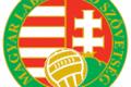 Nyolc csapat kapott nemzetközi licencet az MLSZ-től