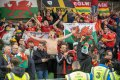 Magyar-walesi: 1-0 már ide